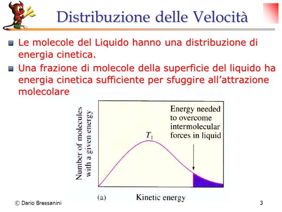 © Dario Bressanini3 Distribuzione delle Velocità Le molecole del Liquido hanno una distribuzione di energia cinetica. Una frazione di molecole della s