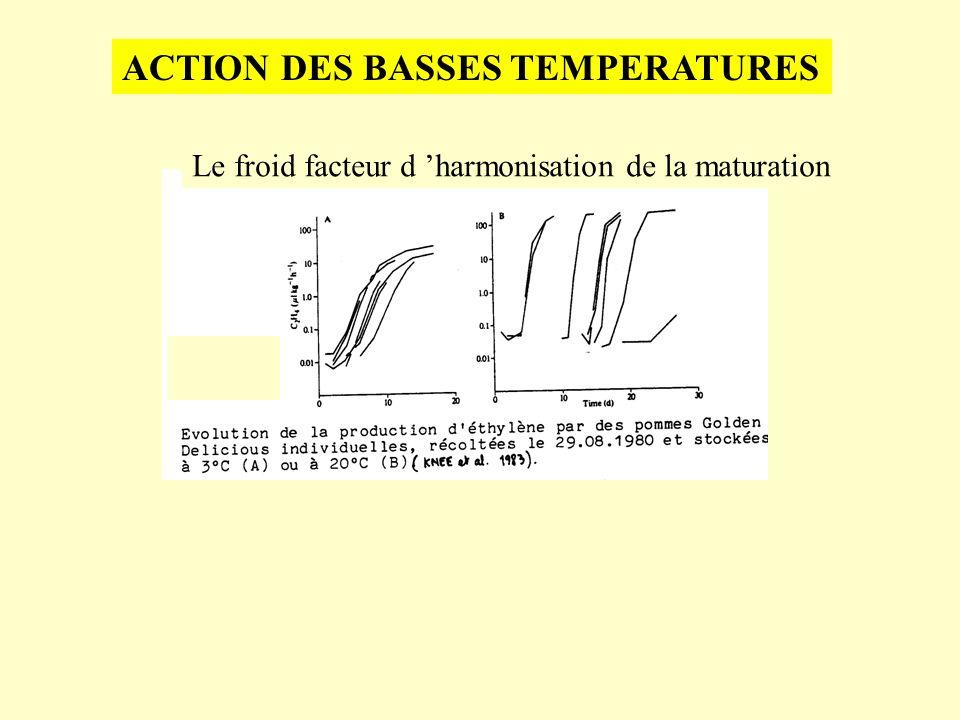 ACTION DES BASSES TEMPERATURES Le froid facteur d harmonisation de la maturation