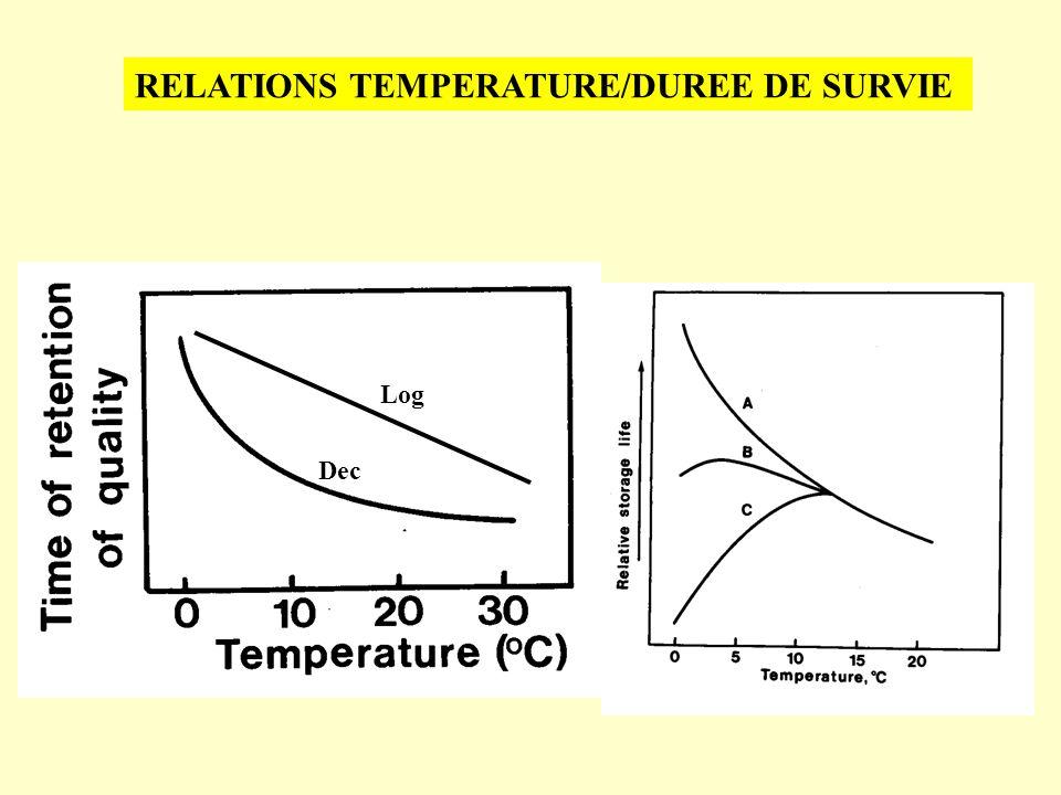 Log Dec RELATIONS TEMPERATURE/DUREE DE SURVIE