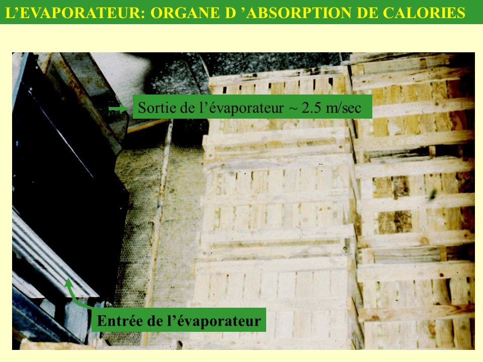 Entrée de lévaporateur Sortie de lévaporateur ~ 2.5 m/sec LEVAPORATEUR: ORGANE D ABSORPTION DE CALORIES