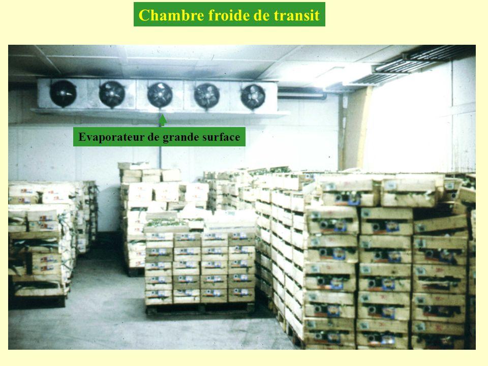 Chambre froide de transit Evaporateur de grande surface