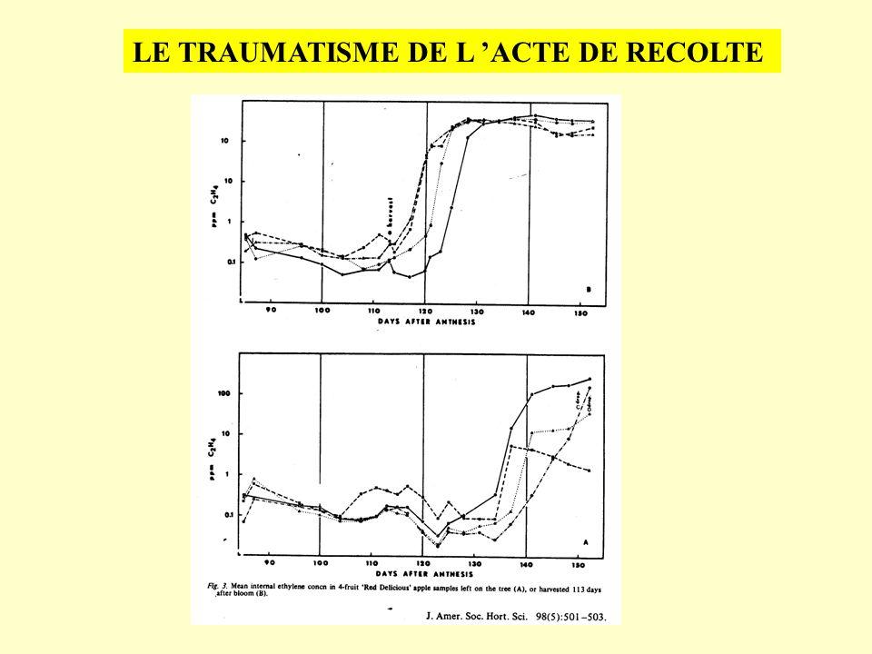 HYPOTHESES SUR LACCELERATION DE LA MATURATION Théorie du déficit hydrique Théorie d un inhibiteur TFSA=holes as % of total film surface area Nakano et al., Plant Physiol., 2003, 131:276 Diospyros kaki