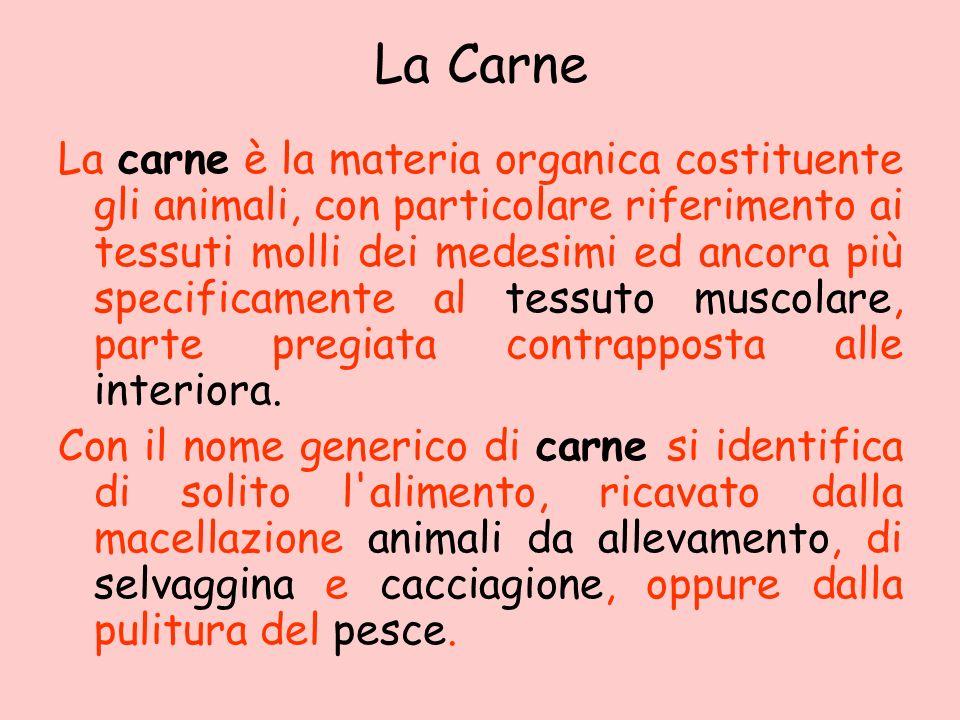 La Carne La carne è la materia organica costituente gli animali, con particolare riferimento ai tessuti molli dei medesimi ed ancora più specificament