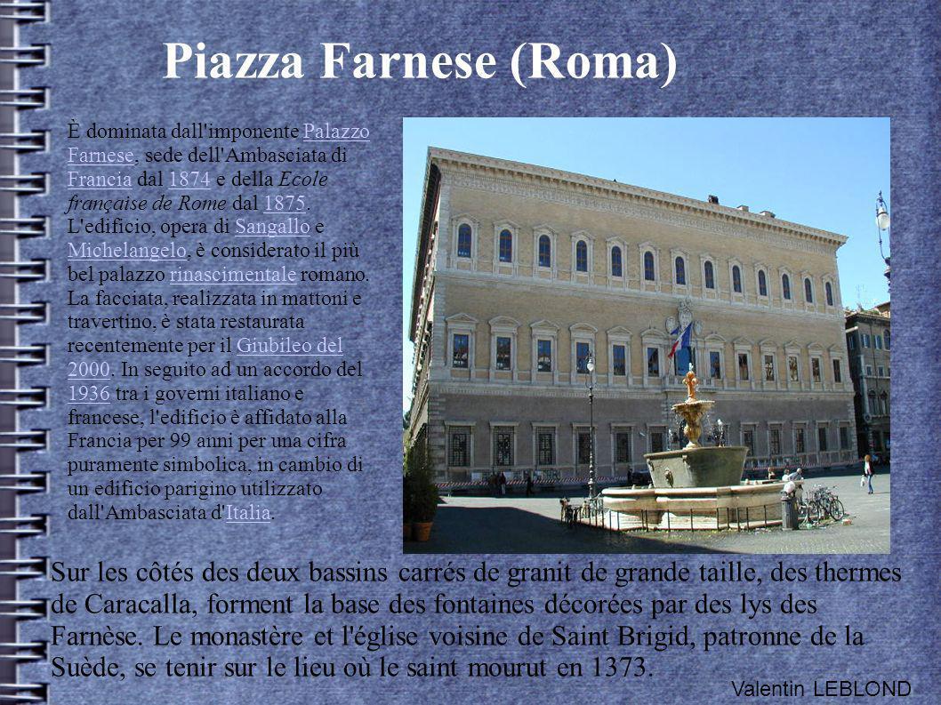 Piazza Farnese (Roma) È dominata dall'imponente Palazzo Farnese, sede dell'Ambasciata di Francia dal 1874 e della Ecole française de Rome dal 1875. L'