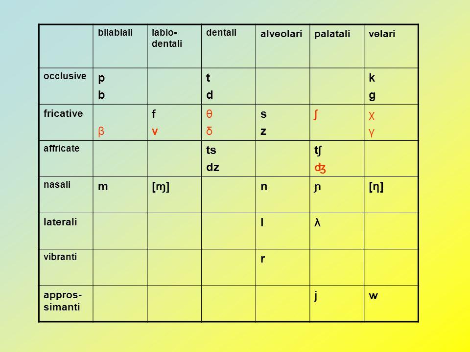 bilabialilabio- dentali dentali alveolaripalatalivelari occlusive pbpb tdtd kgkg fricative β fvfv θδθδ szsz ʃχγχγ affricate ts dz tʃʤtʃʤ nasali m [ ɱ]