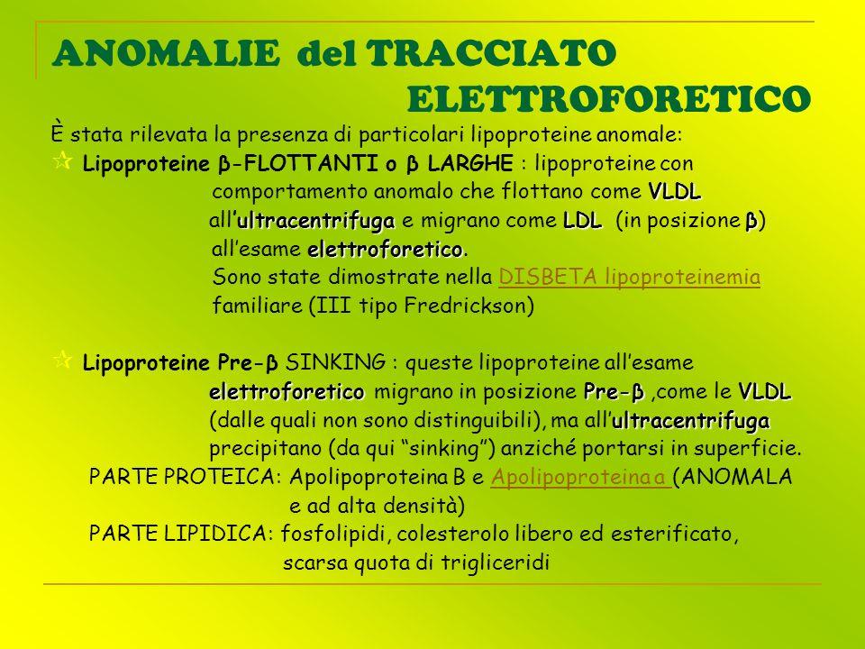 ANOMALIE del TRACCIATO ELETTROFORETICO È stata rilevata la presenza di particolari lipoproteine anomale: Lipoproteine β-FLOTTANTI o β LARGHE : lipopro
