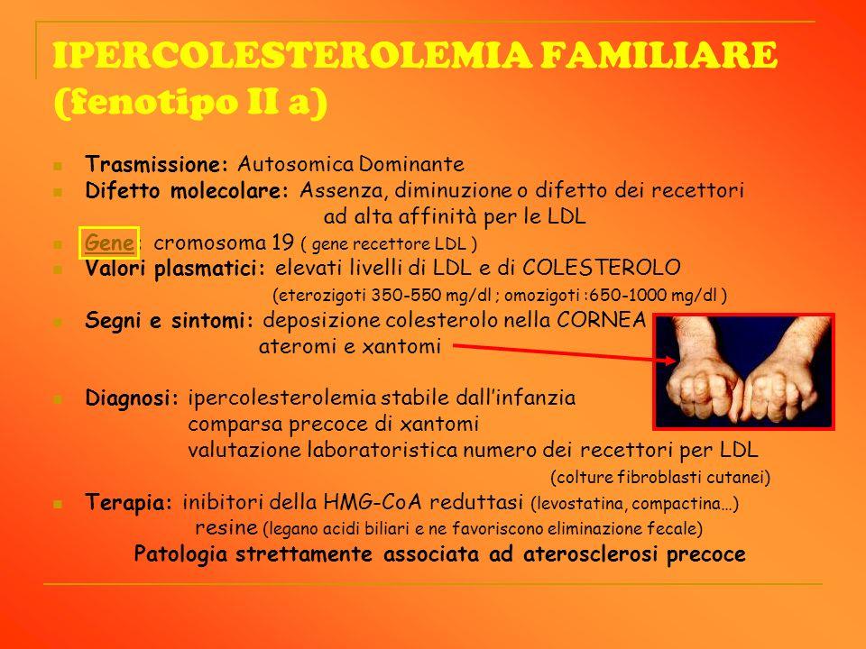 IPERCOLESTEROLEMIA FAMILIARE (fenotipo II a) Trasmissione: Autosomica Dominante Difetto molecolare: Assenza, diminuzione o difetto dei recettori ad al