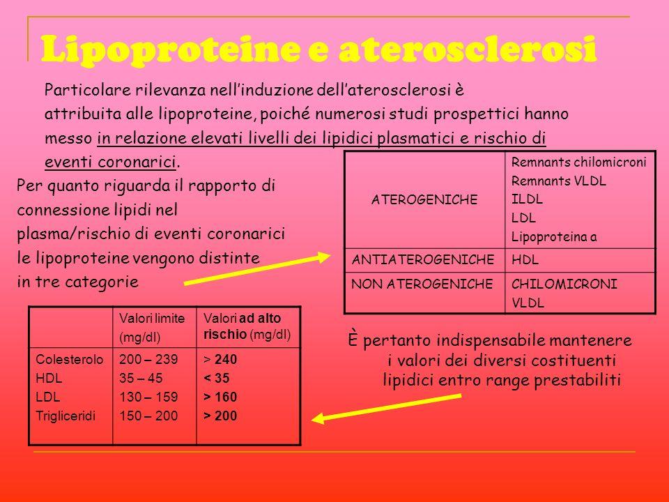 Lipoproteine e aterosclerosi Per quanto riguarda il rapporto di connessione lipidi nel plasma/rischio di eventi coronarici le lipoproteine vengono dis