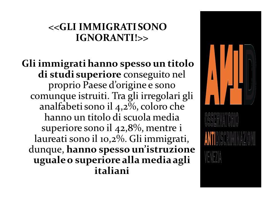 > Gli immigrati hanno spesso un titolo di studi superiore conseguito nel proprio Paese dorigine e sono comunque istruiti. Tra gli irregolari gli analf