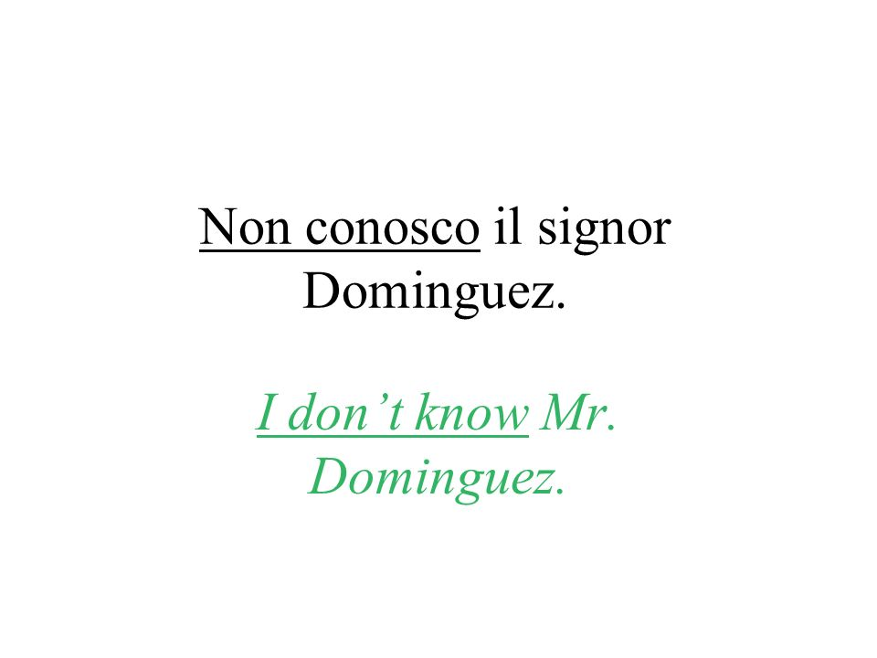 Non conosco il signor Dominguez. I dont know Mr. Dominguez.