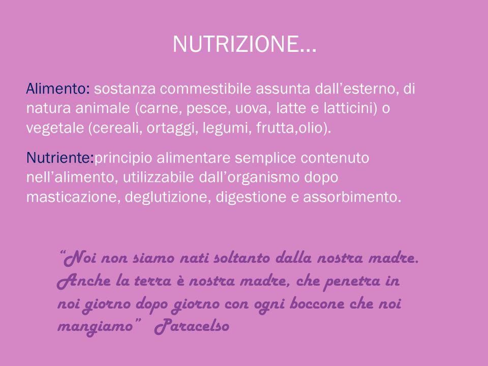 NUTRIZIONE… Alimento: sostanza commestibile assunta dallesterno, di natura animale (carne, pesce, uova, latte e latticini) o vegetale (cereali, ortagg