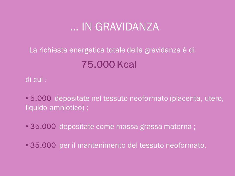 … IN GRAVIDANZA La richiesta energetica totale della gravidanza è di 75.000 Kcal di cui : 5.000 depositate nel tessuto neoformato (placenta, utero, li