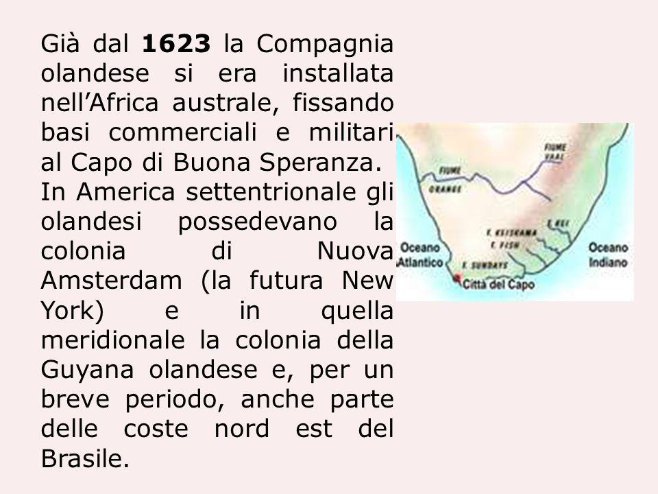 Già dal 1623 la Compagnia olandese si era installata nellAfrica australe, fissando basi commerciali e militari al Capo di Buona Speranza. In America s