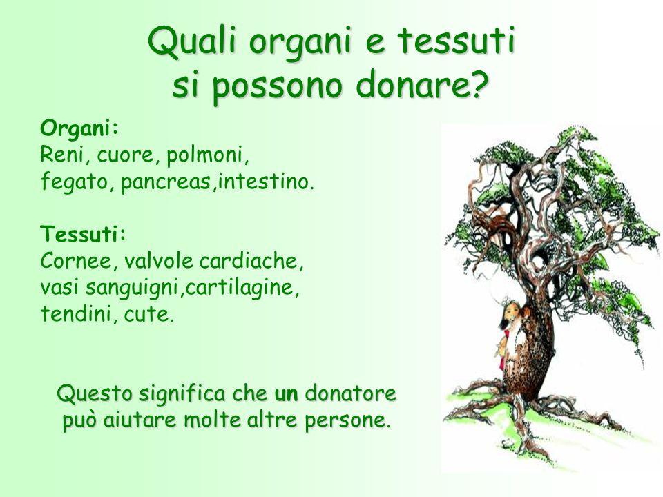Quali organi e tessuti si possono donare? Organi: Reni, cuore, polmoni, fegato, pancreas,intestino. Tessuti: Cornee, valvole cardiache, vasi sanguigni