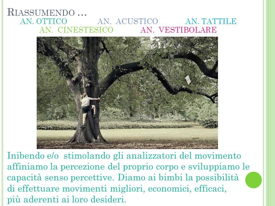 R IASSUMENDO … AN.TATTILE AN. CINESTESICOAN. VESTIBOLARE AN.