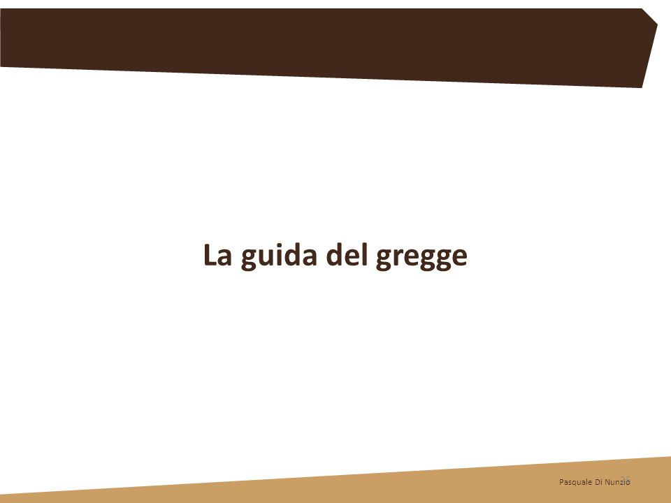 Pasquale Di Nunzio 25 La guida del gregge