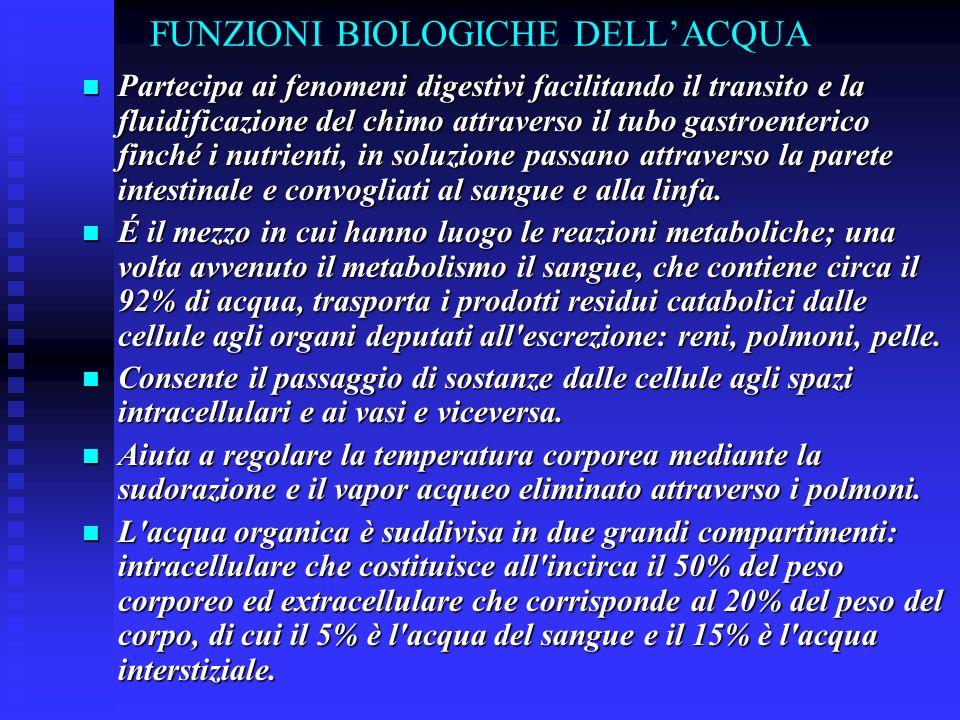 FUNZIONI BIOLOGICHE DELLACQUA Partecipa ai fenomeni digestivi facilitando il transito e la fluidificazione del chimo attraverso il tubo gastroenterico