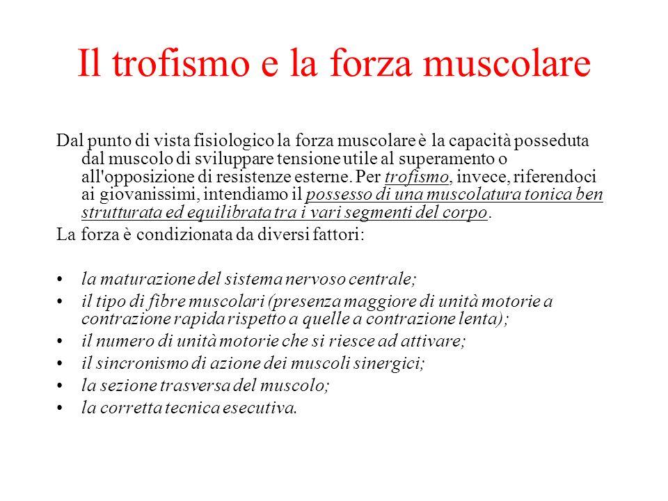 Il trofismo e la forza muscolare Dal punto di vista fisiologico la forza muscolare è la capacità posseduta dal muscolo di sviluppare tensione utile al