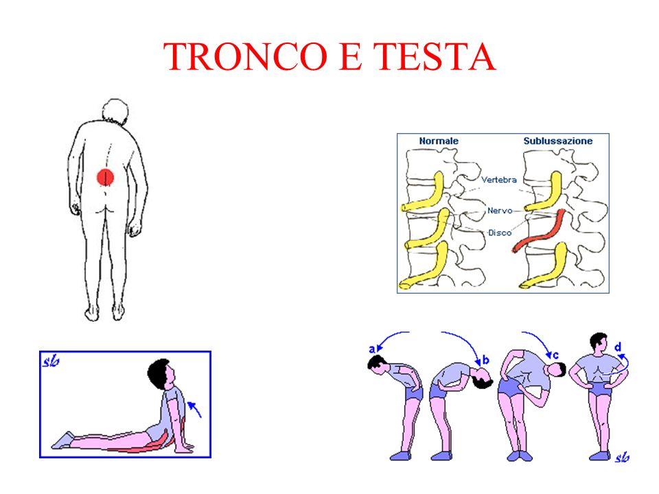 TRONCO E TESTA