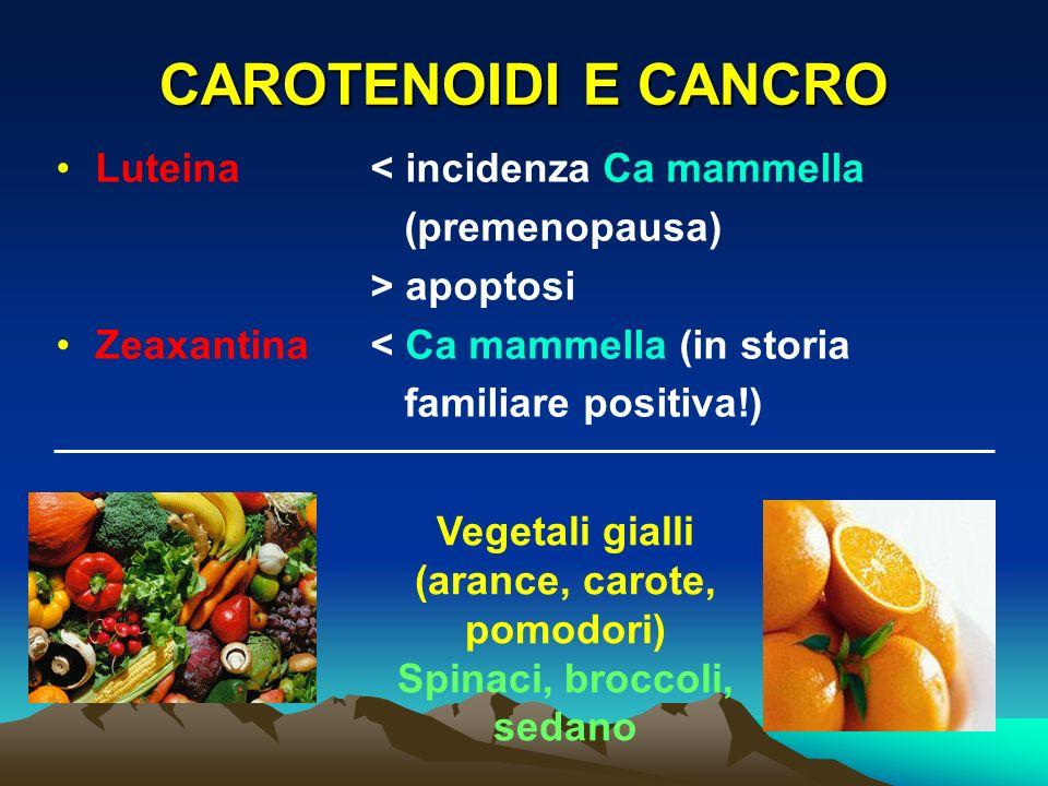 CAROTENOIDI E CANCRO Luteina< incidenza Ca mammella (premenopausa) > apoptosi Zeaxantina< Ca mammella (in storia familiare positiva!) Vegetali gialli (arance, carote, pomodori) Spinaci, broccoli, sedano