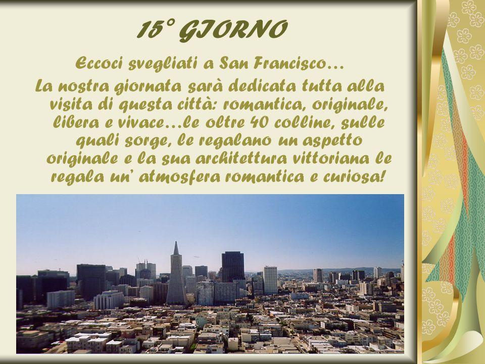 15° GIORNO Eccoci svegliati a San Francisco… La nostra giornata sarà dedicata tutta alla visita di questa città: romantica, originale, libera e vivace