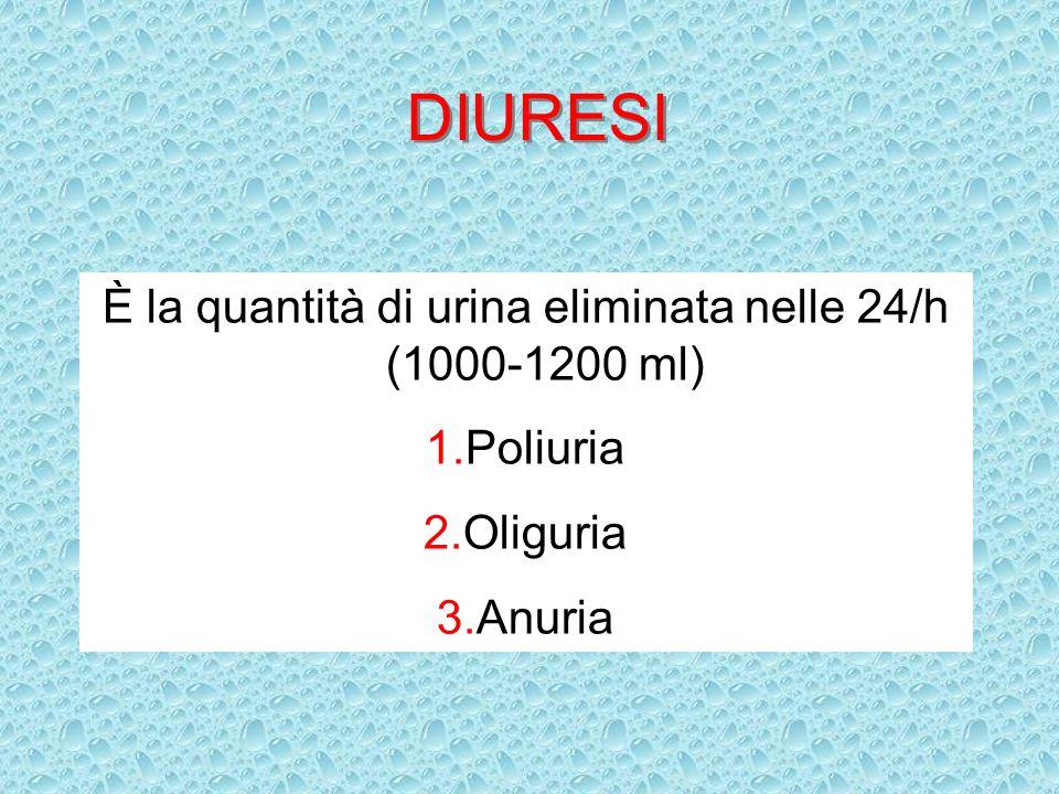 DIURESI È la quantità di urina eliminata nelle 24/h (1000-1200 ml) 1.Poliuria 2.Oliguria 3.Anuria