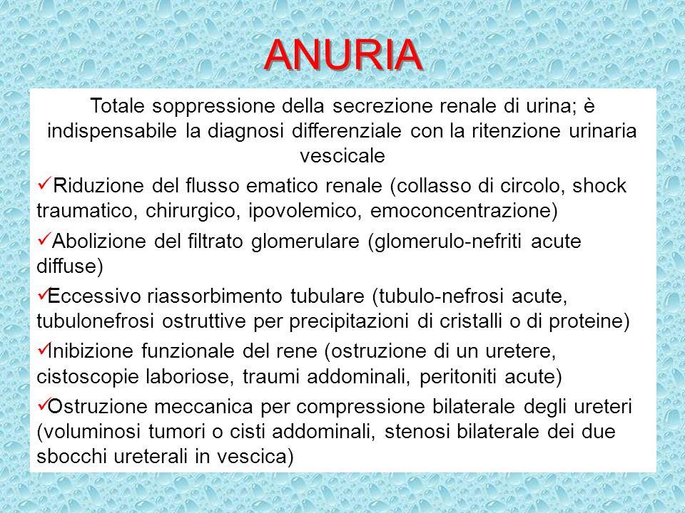 ANURIA Totale soppressione della secrezione renale di urina; è indispensabile la diagnosi differenziale con la ritenzione urinaria vescicale Riduzione