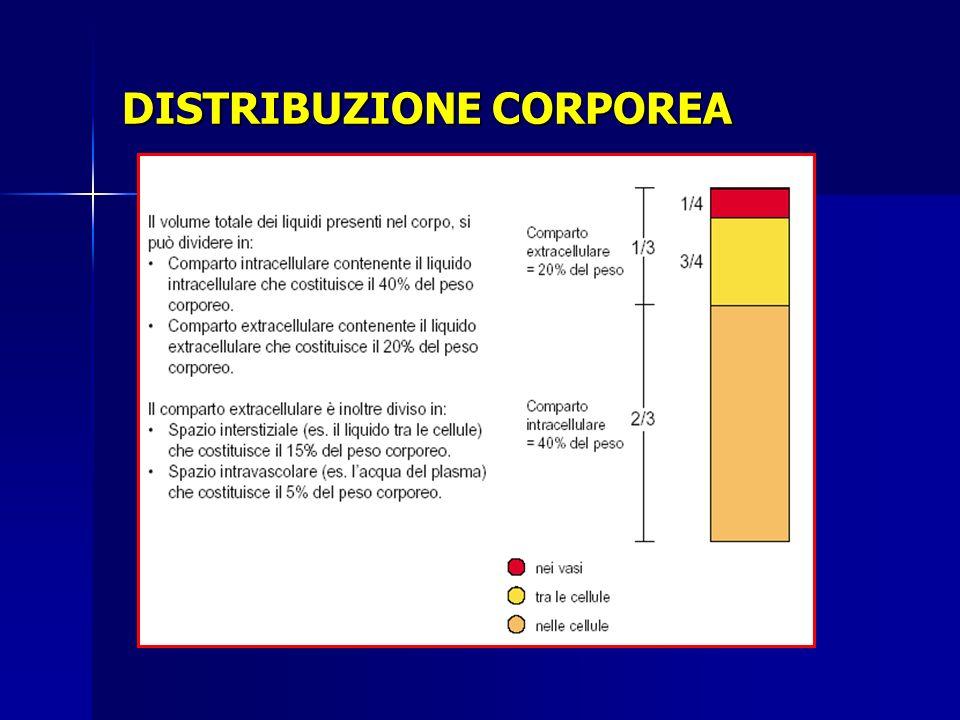 Bilancio idroelettrolitico intra – extra cellulare