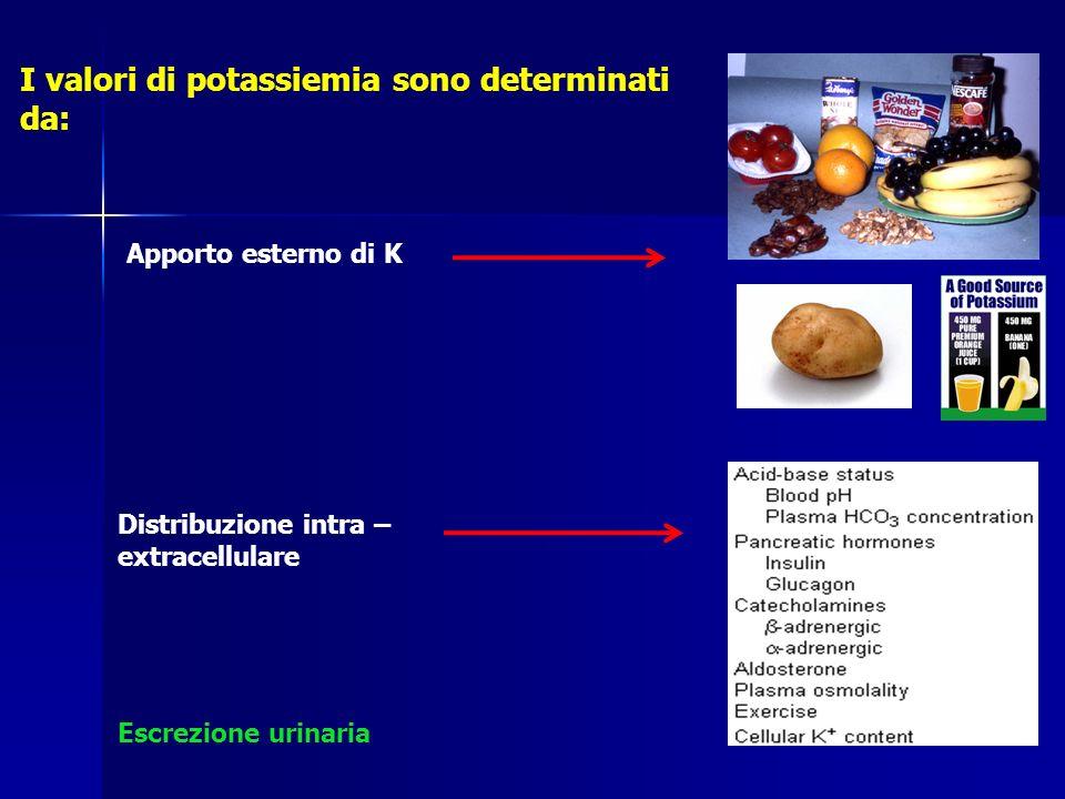 Escrezione urinaria I valori di potassiemia sono determinati da: Apporto esterno di K Distribuzione intra – extracellulare