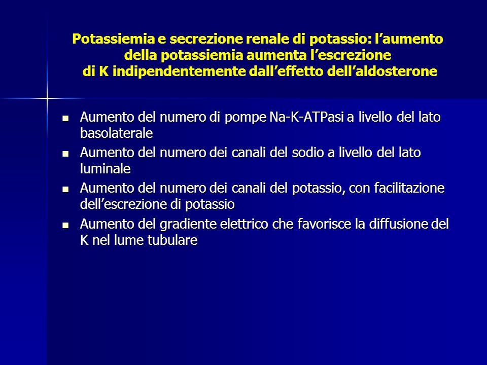 Potassiemia e secrezione renale di potassio: laumento della potassiemia aumenta lescrezione di K indipendentemente dalleffetto dellaldosterone Aumento