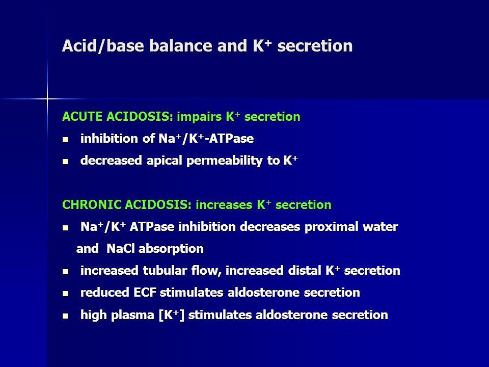 Acid/base balance and K + secretion ACUTE ACIDOSIS: impairs K + secretion inhibition of Na + /K + -ATPase inhibition of Na + /K + -ATPase decreased ap