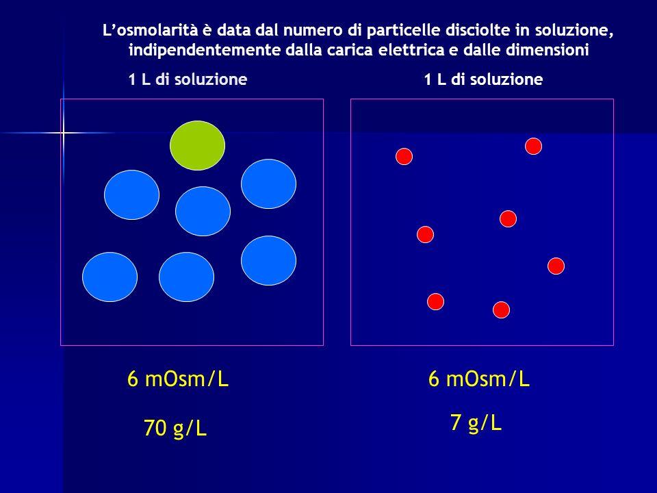 1 L di soluzione 6 mOsm/L 70 g/L 7 g/L Losmolarità è data dal numero di particelle disciolte in soluzione, indipendentemente dalla carica elettrica e