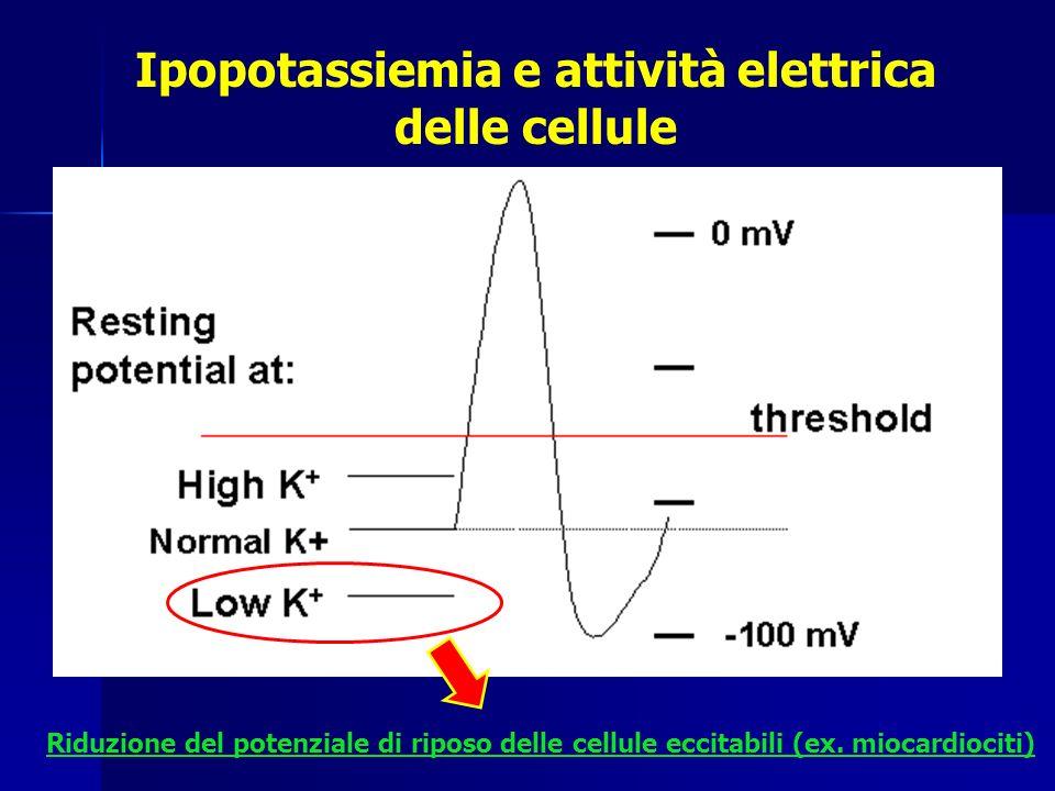 Ipopotassiemia e attività elettrica delle cellule Riduzione del potenziale di riposo delle cellule eccitabili (ex. miocardiociti)