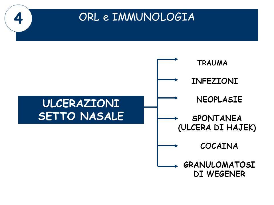 ORL e IMMUNOLOGIA ULCERAZIONI SETTO NASALE TRAUMA GRANULOMATOSI DI WEGENER SPONTANEA (ULCERA DI HAJEK) 4 COCAINA INFEZIONI NEOPLASIE
