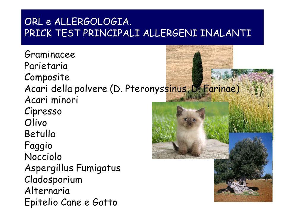 ORL e ALLERGOLOGIA. PRICK TEST PRINCIPALI ALLERGENI INALANTI Graminacee Parietaria Composite Acari della polvere (D. Pteronyssinus, D. Farinae) Acari