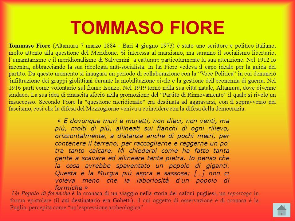 TOMMASO FIORE Tommaso Fiore (Altamura 7 marzo 1884 - Bari 4 giugno 1973) è stato uno scrittore e politico italiano, molto attento alla questione del M