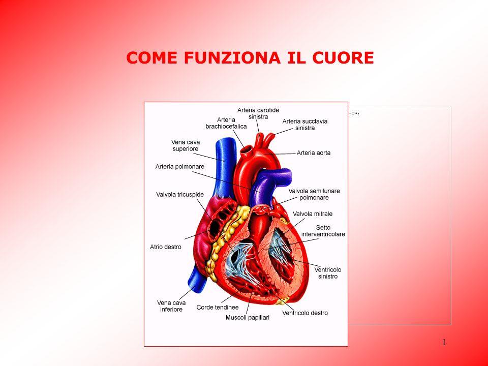 Classe 5 A - Benedetti Claudia1 COME FUNZIONA IL CUORE