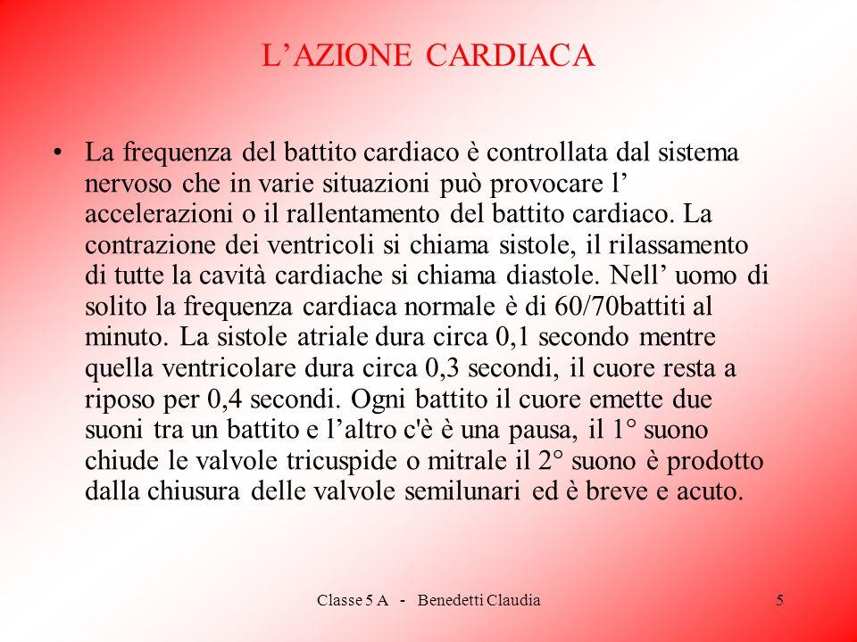 Classe 5 A - Benedetti Claudia5 LAZIONE CARDIACA La frequenza del battito cardiaco è controllata dal sistema nervoso che in varie situazioni può provocare l accelerazioni o il rallentamento del battito cardiaco.