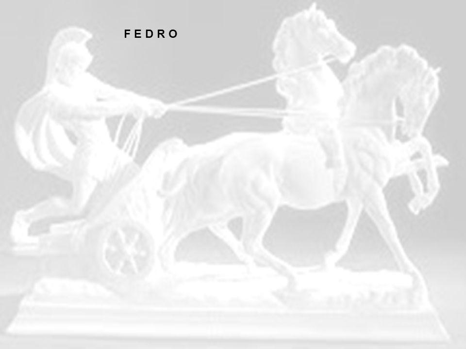 Il Fedro é una delle opere più famose di Platone in quanto viene descritta la sorte delle anime dopo la morte e si accenna alla celeberrima dottrina delle idee.