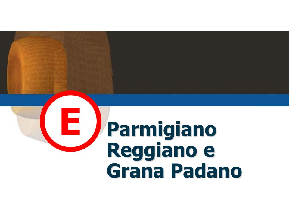 Parmigiano Reggiano e Grana Padano E
