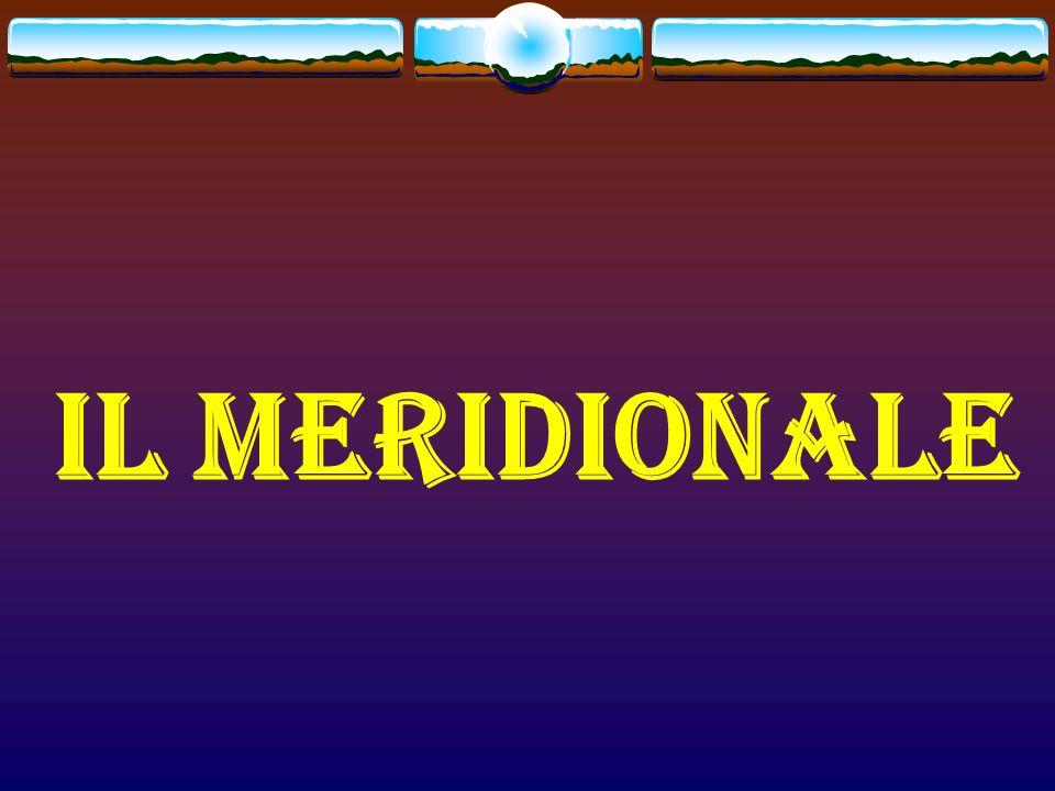 IL MERIDIONALE