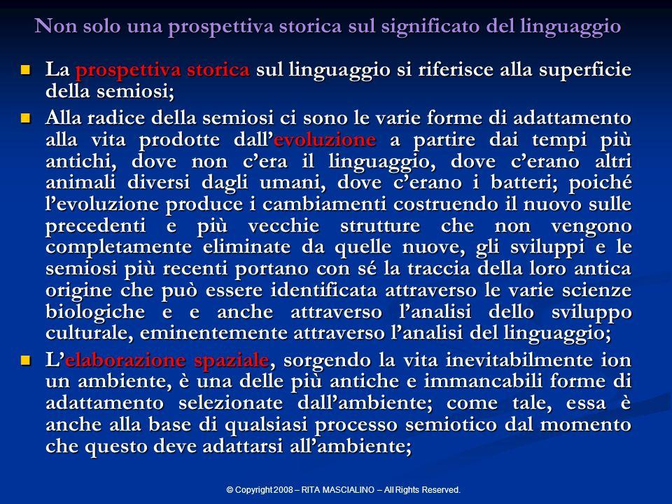 © Copyright 2008 – RITA MASCIALINO – All Rights Reserved.