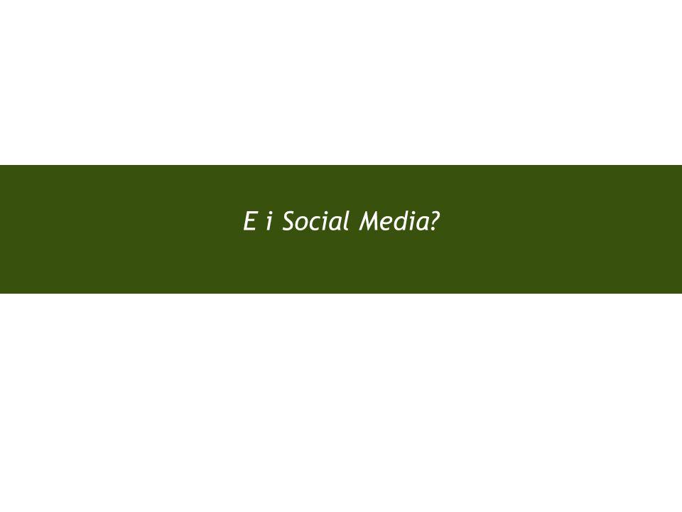 Pagina 13 E i Social Media.