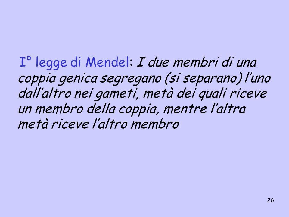 26 I° legge di Mendel: I due membri di una coppia genica segregano (si separano) luno dallaltro nei gameti, metà dei quali riceve un membro della copp