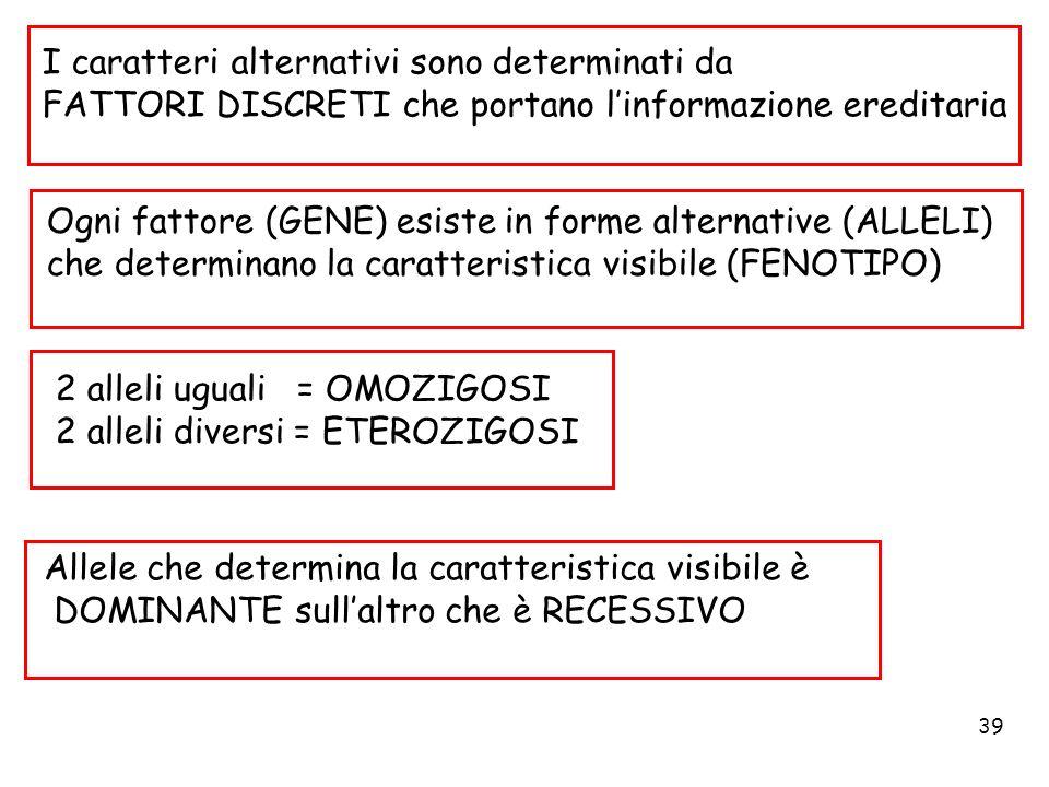 39 I caratteri alternativi sono determinati da FATTORI DISCRETI che portano linformazione ereditaria Ogni fattore (GENE) esiste in forme alternative (