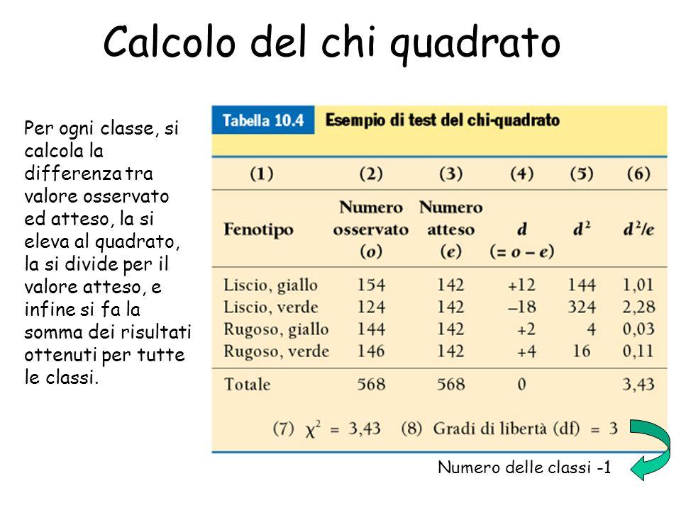 56 Numero delle classi -1 Calcolo del chi quadrato Per ogni classe, si calcola la differenza tra valore osservato ed atteso, la si eleva al quadrato,