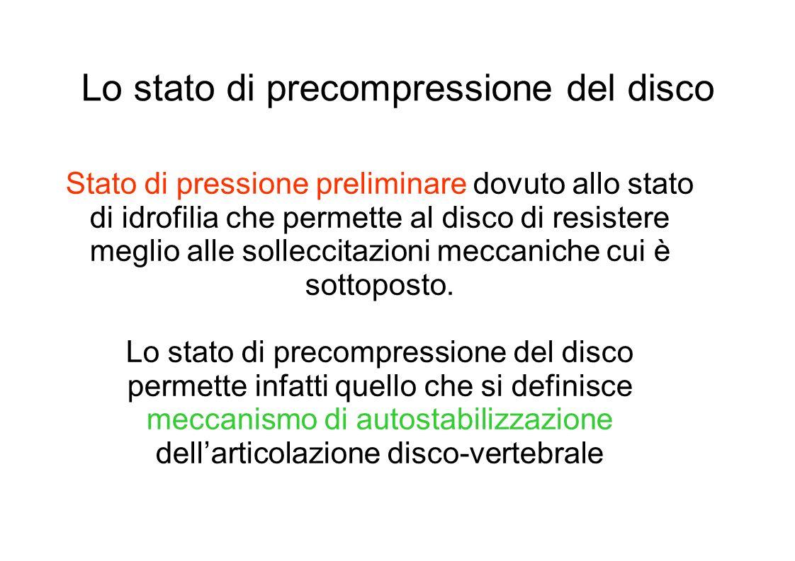 Lo stato di precompressione del disco Stato di pressione preliminare dovuto allo stato di idrofilia che permette al disco di resistere meglio alle solleccitazioni meccaniche cui è sottoposto.