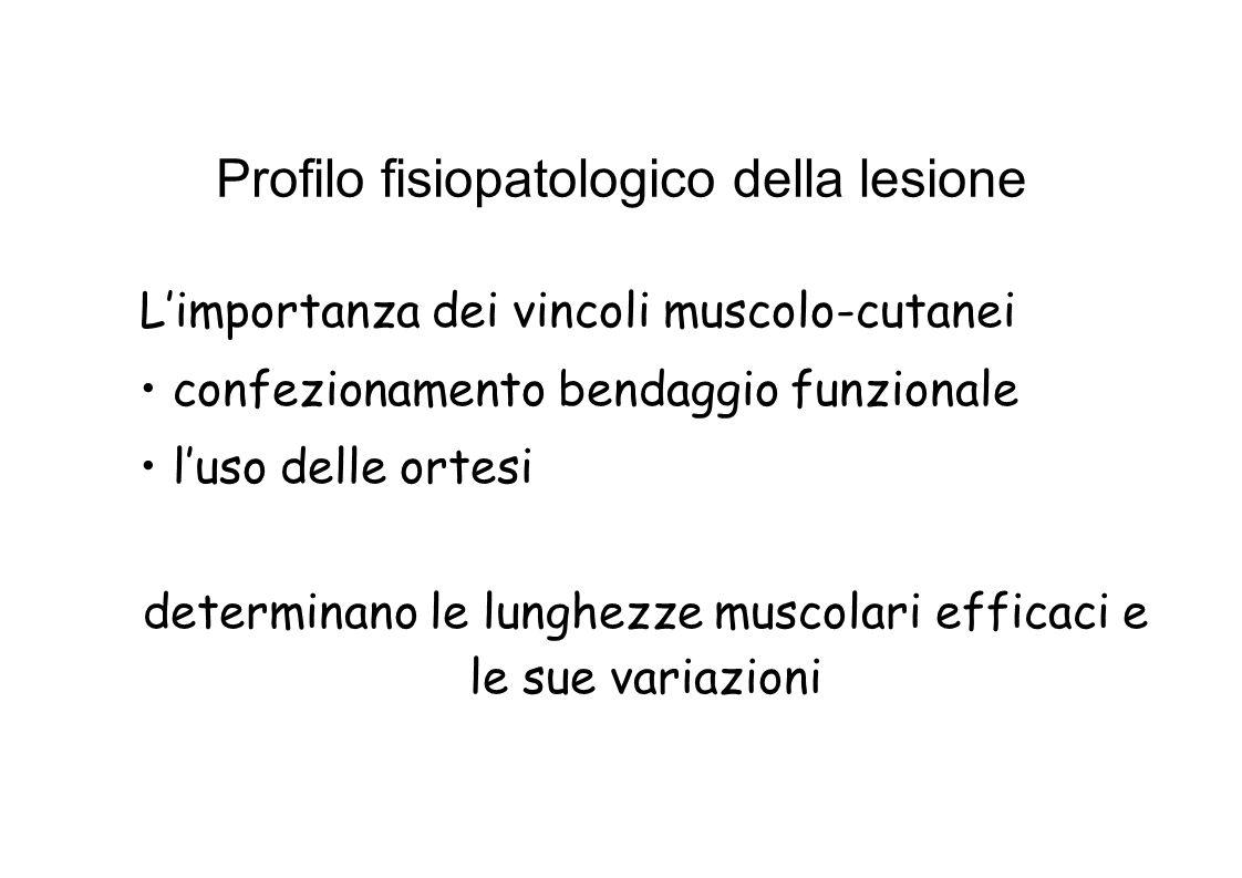 Profilo fisiopatologico della lesione Limportanza dei vincoli muscolo-cutanei confezionamento bendaggio funzionale luso delle ortesi determinano le lunghezze muscolari efficaci e le sue variazioni