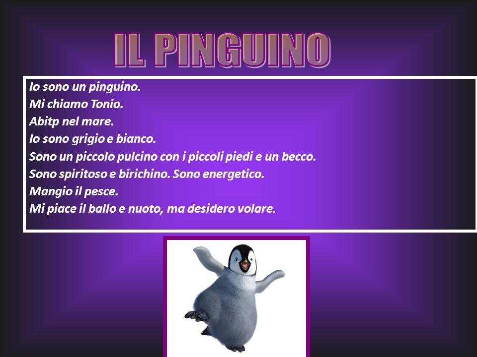 Io sono un pinguino. Mi chiamo Tonio. Abitp nel mare. Io sono grigio e bianco. Sono un piccolo pulcino con i piccoli piedi e un becco. Sono spiritoso