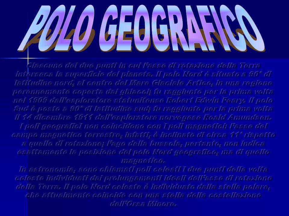 Ciascuno dei due punti sulla superficie della Terra (detti polo nord magnetico e polo sud magnetico), verso i quali si orientano le estremità opposte